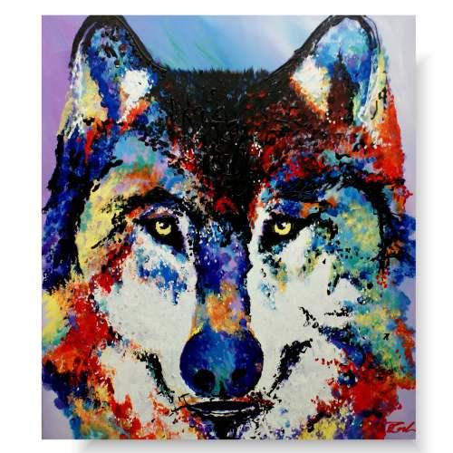 obraz kolorowy wilk