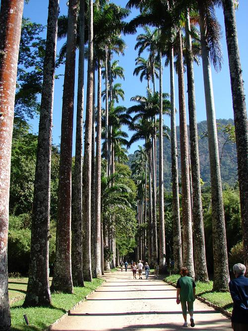 Bothanical Gardens