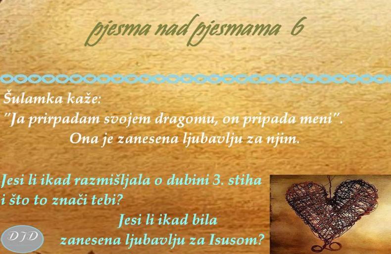 pnp-pitanje-6