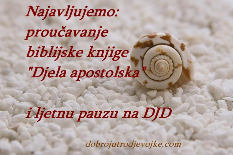 slika-shell-beach stones-najava