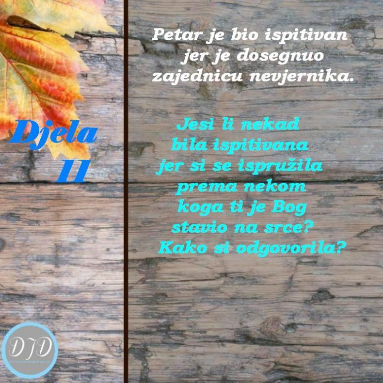 DA-pit 11