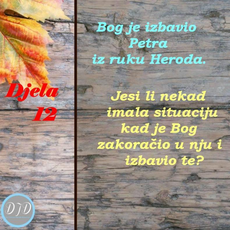 DA-pit 12