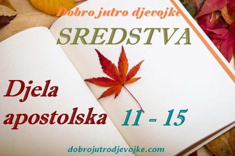 slika - blog-DA-11-15