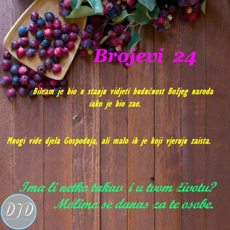BR-pit-24