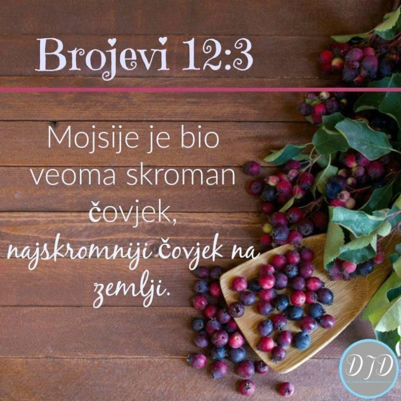 BR - stih 12