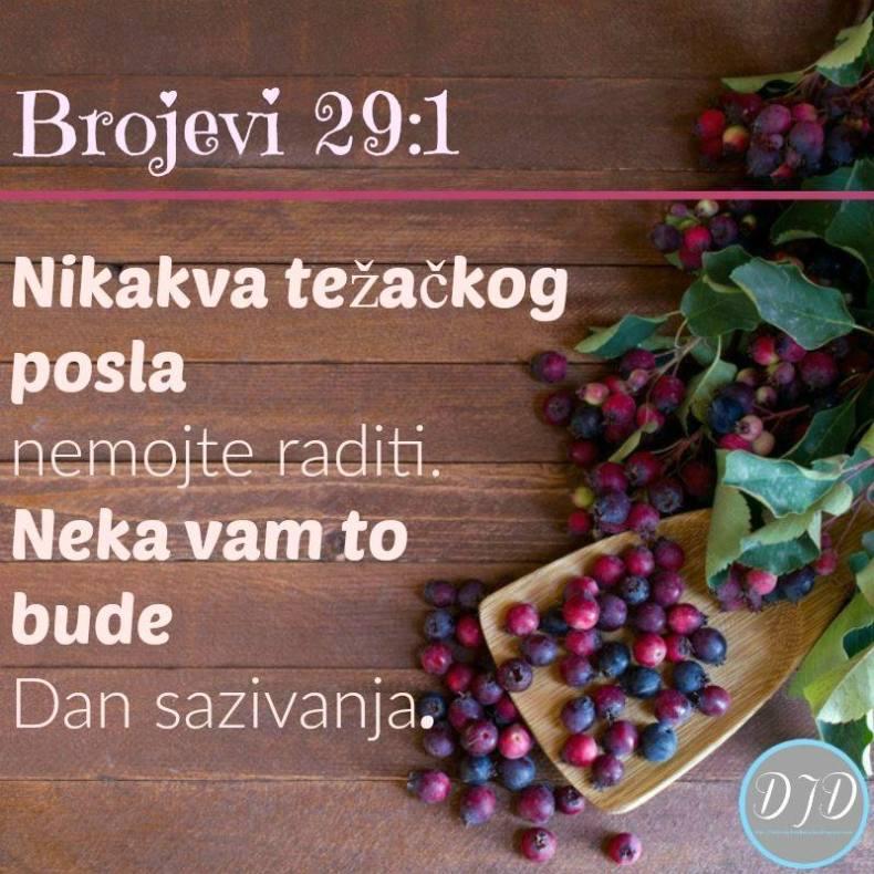 BR-stih 29