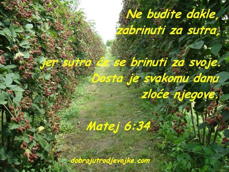 Matej 6-34