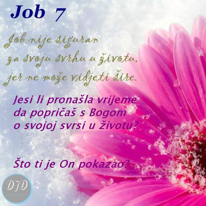 pit - 7