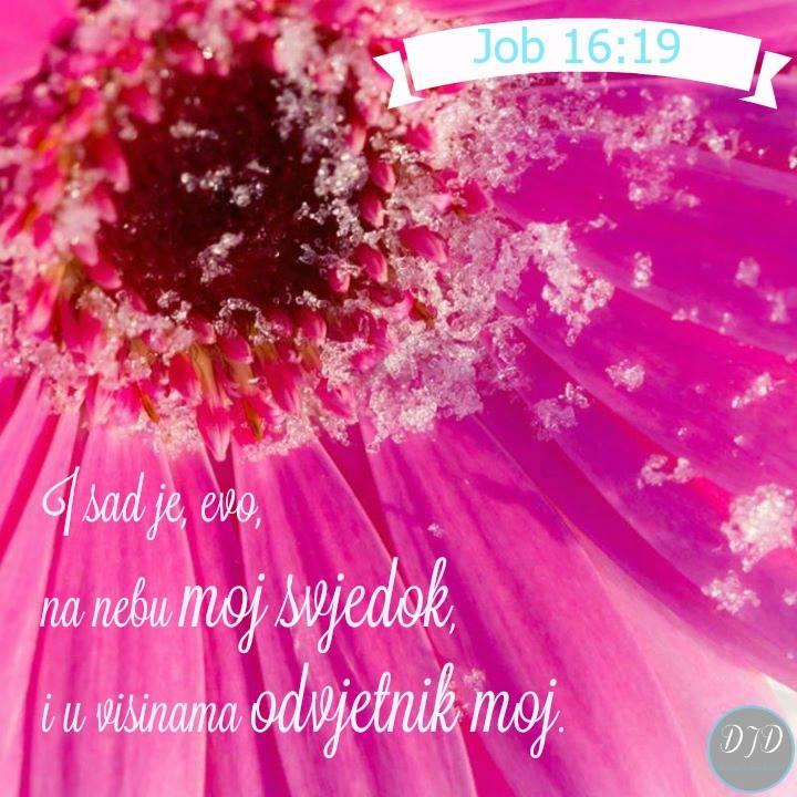 stih - 16