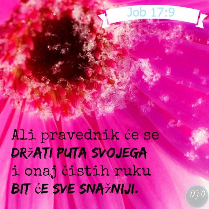 stih - 17