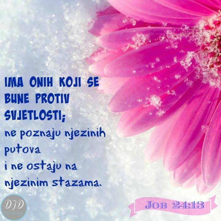 stih - 24