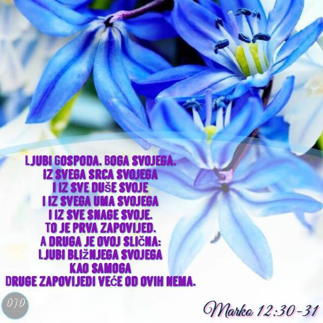 stih - 12
