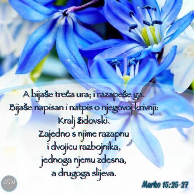 stih - 15