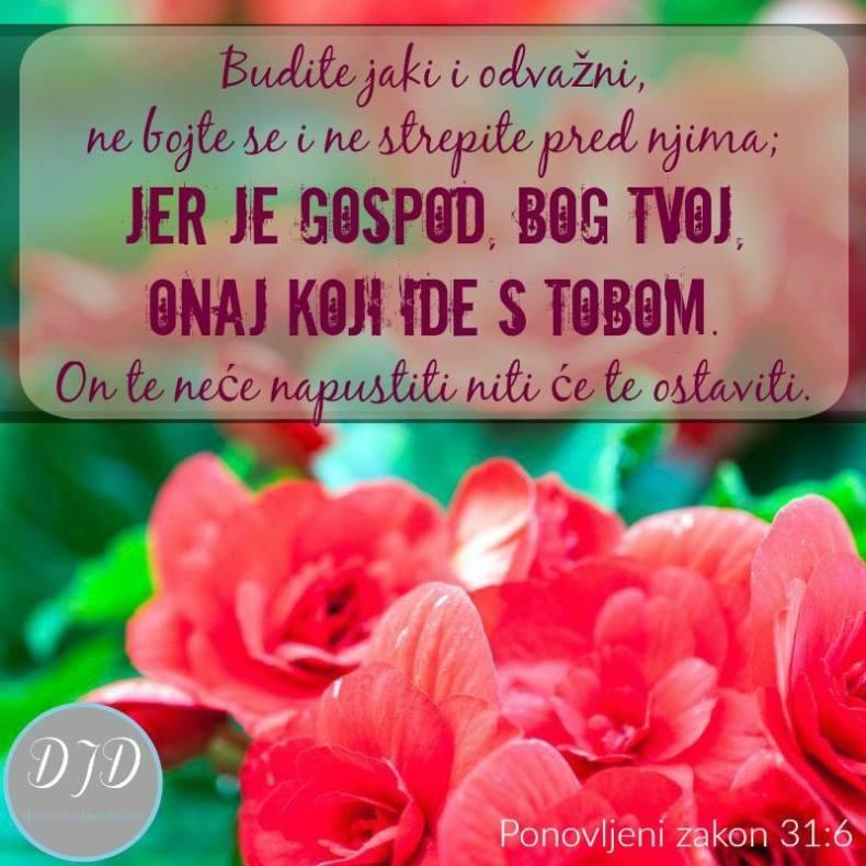 stih-31