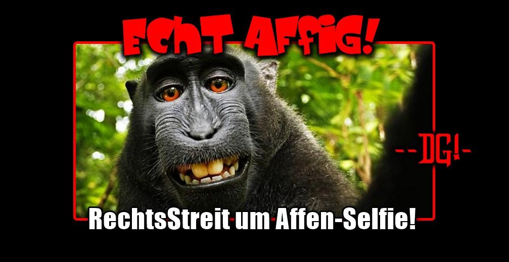 Affen-Selfie löst Urheberrechtsstreit aus (Foto: Naruto/David Slater)