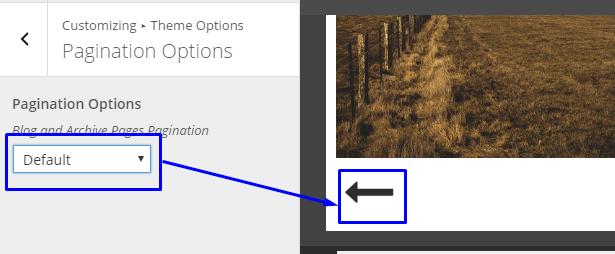 default-pagintation
