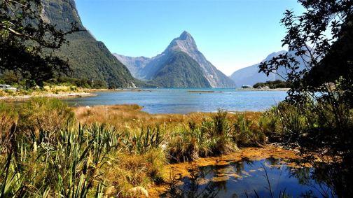 Taman Nasional Fiordland New Zealand