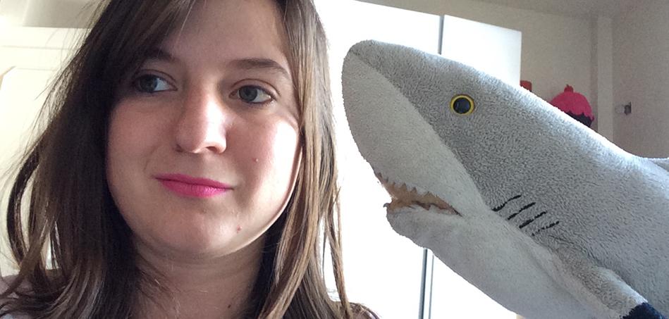 A história do tubarão de pelúcia