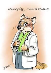 Quarrydog, Medical student