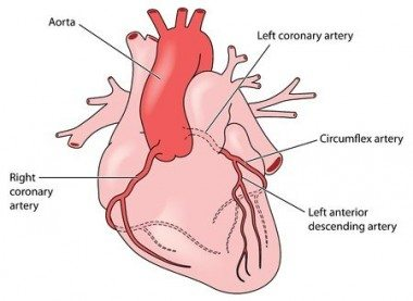 Angina Pectoris - What Is Angina and How Do We Deal With It?