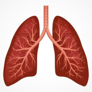22 Important Causes of Acute and Chronic Cough