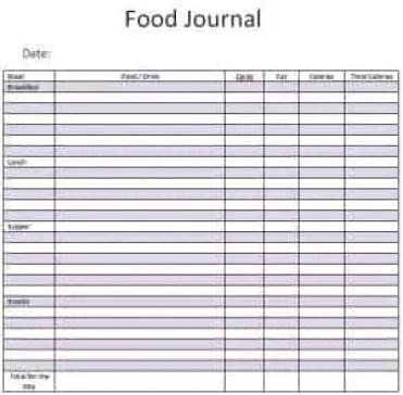 food journal 2641