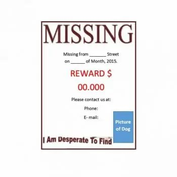 top 5 missing cat posters lost pet