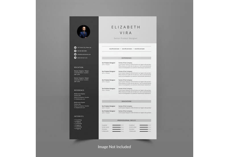 12 Best Architecture Resume Templates How To Format
