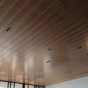 Feature Ceiling Acoustic Ply