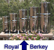 My family uses the middle-sized Royal Berkey, pictured