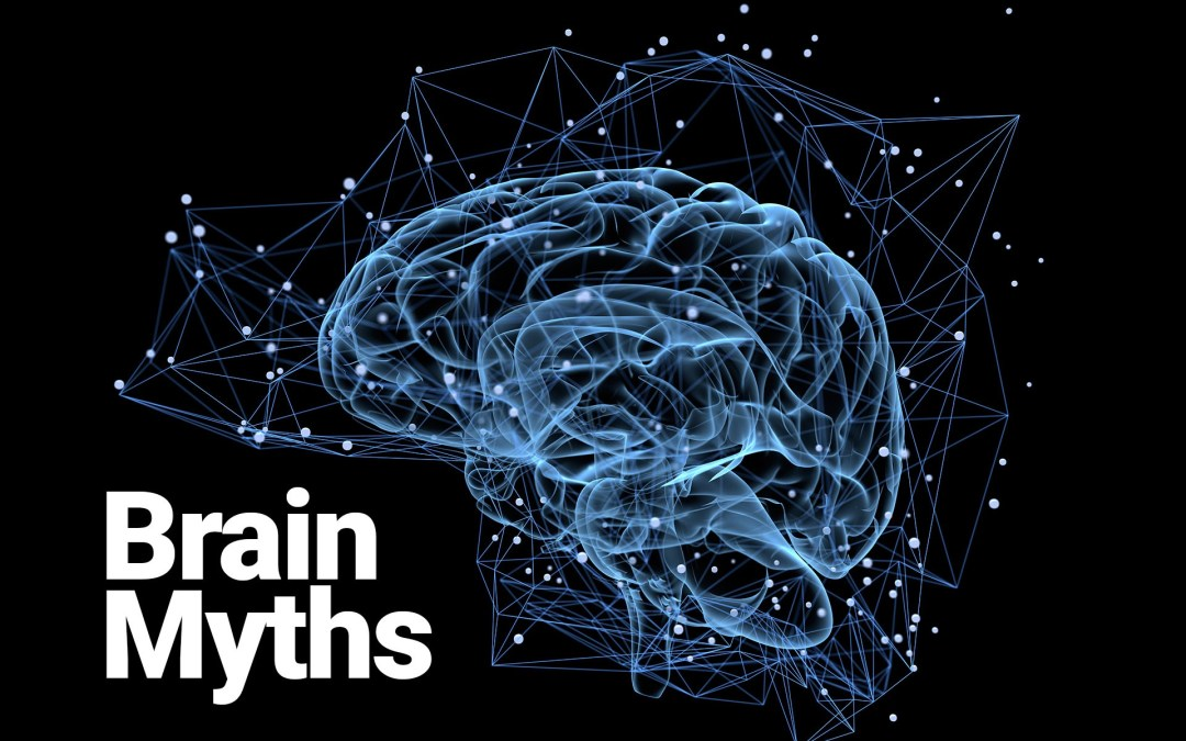 Brain myths
