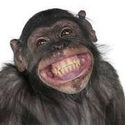 smilechimp