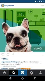 Publicidad de Sura sobre amor a las mascotas