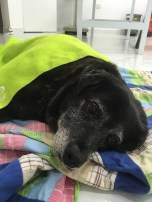Berta viviendo sus últimos días.