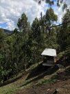 Imagen de la guardería canina de DOCTOR PULGAS. a menos de una hora de Medellín.