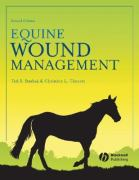 Woundmanagement