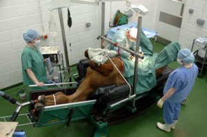 colicsurgery