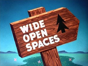 wide_open_spaces