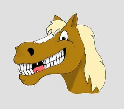 Horse Emotions