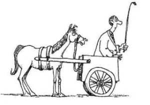 cart-before-horse-2