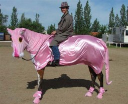 pink-panther-horse