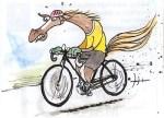 horse.exercising