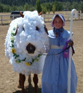 horsesheepcostume