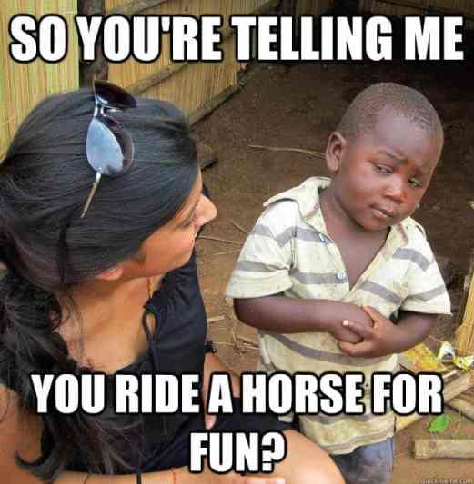 Yourideahorse