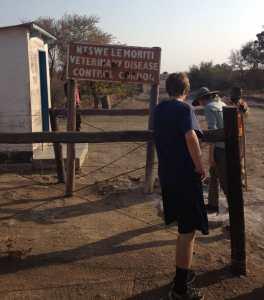 Africa2013 VeterinaryControl
