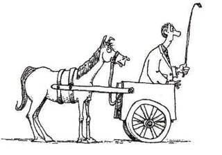 cart-before-horse-2.jpg