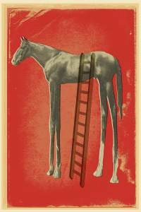 high-horse