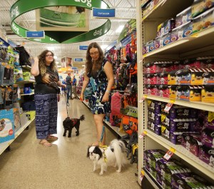 Hestia and Gigi in Petsmart with Scarlet and Veronica, standing in the dog clothing aisle