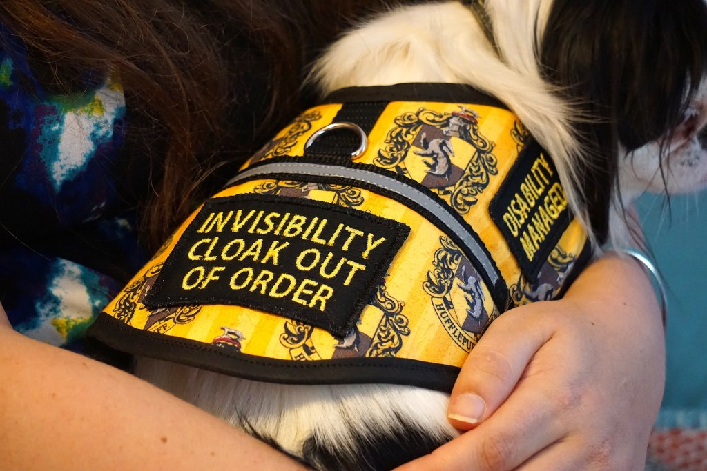 Invisibility cloak out of order patch, with reflective stripe across the middle and a D ring to hook a leash to.