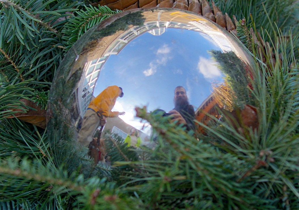 A rare picture of Brad! This time he is in a reflection on a giant silver ornament.